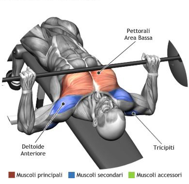 mens chest workouts most effective chest workouts all
