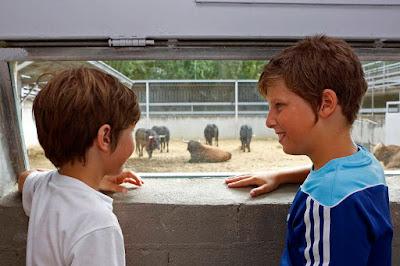 niños toros gas pamplona san fermin 2018_eduardo buxens