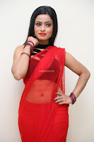 Aasma Syed in Red Saree Sleeveless Black Choli Spicy Pics ~  Exclusive Celebrities Galleries 083.jpg