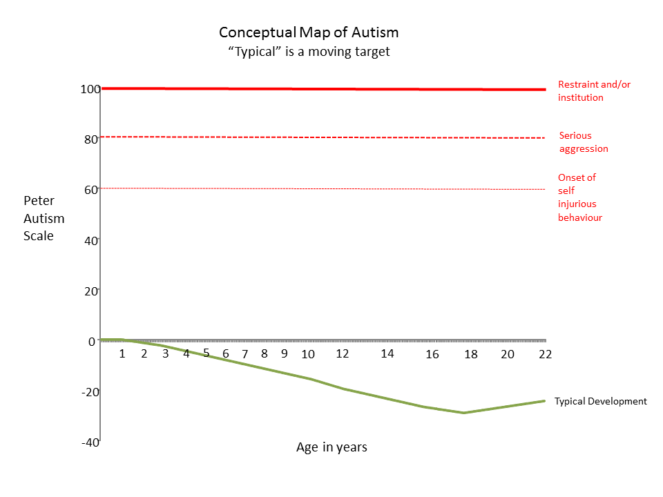 Epiphany Conceptual Map Of Behavioural Homeostasis In Autism