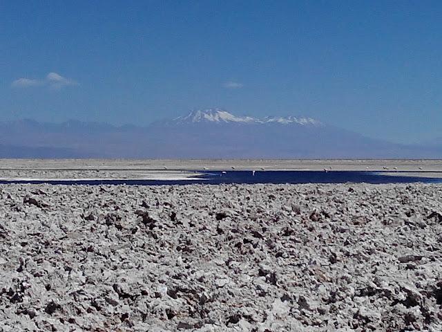 Laguna Chaxa Atacama