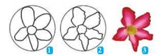 teknik menggambar flora, materi seni budaya kelas 7 k 13
