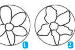 Teknik Menggambar Flora, Fauna dan Alam Benda