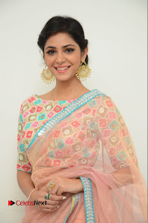 Actress Priyanka Bharadwaj Pictures in Saree at Mister 420 Press Meet  0010.JPG