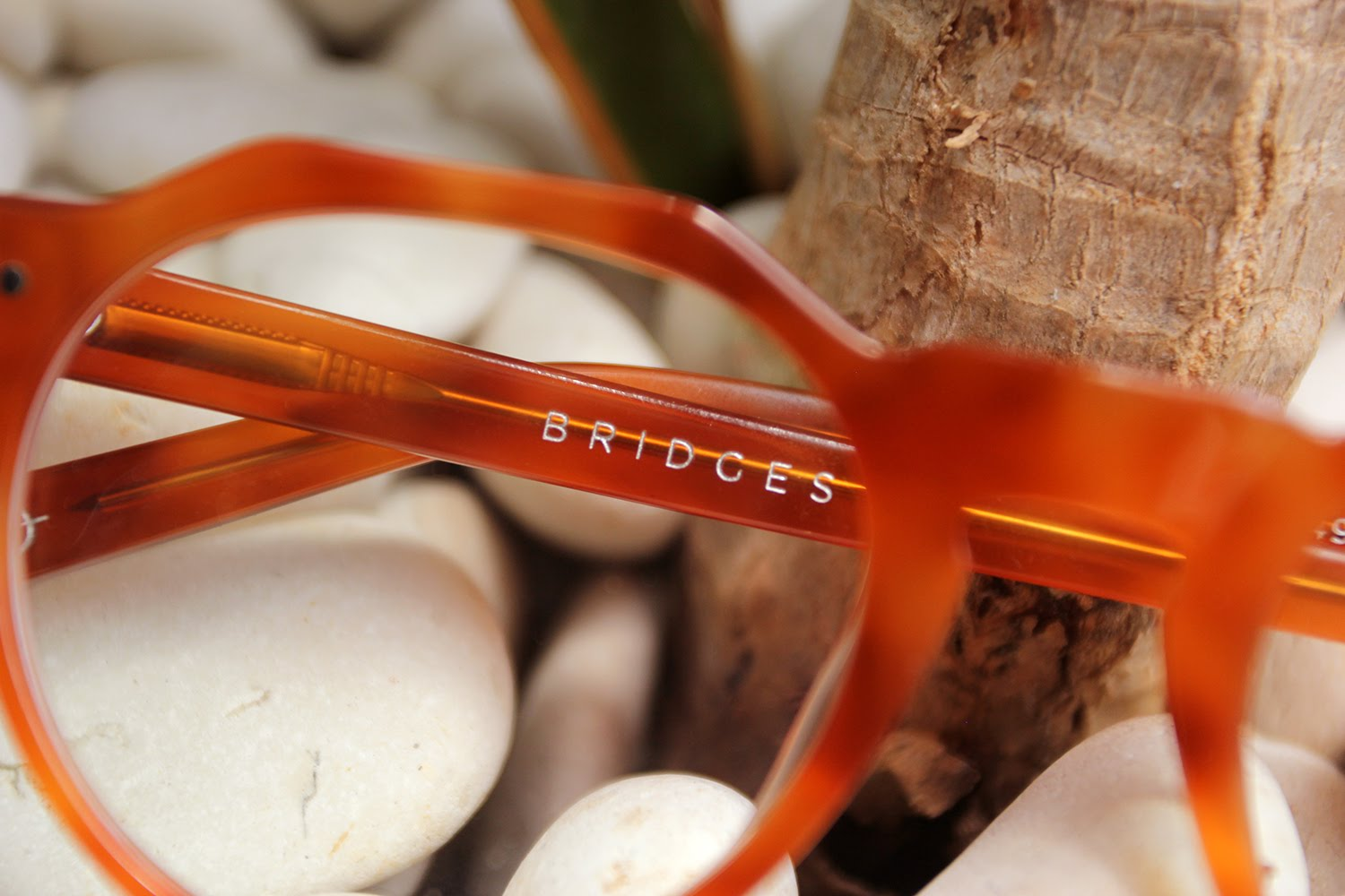 Bridges Eyewear Charles 3
