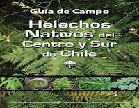 helechos-nativos-del-centro-y-sur-de-chile
