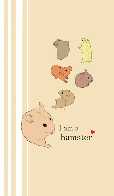I am a hamster.