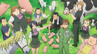 ANIME Silver Spoon  (Gin no Saji)