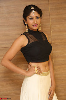 Roshni Prakash in a Sleeveless Crop Top and Long Cream Ethnic Skirt 062.JPG