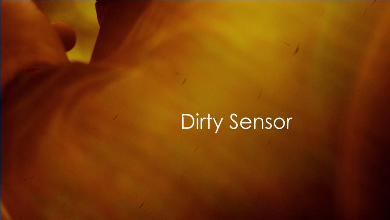 How to Professionally Clean Your Own Sensor