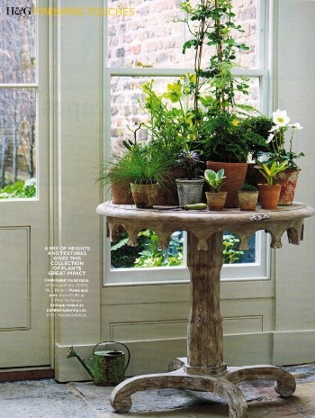 Roses And Rust Monday Musings Perfect Potted Plants