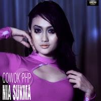 Lirik Lagu Nia Sukma Cowok PHP