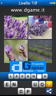 PACCHETTO 7 Soluzioni Trova la Parola - Foto Quiz con Immagini e Parole livello 19