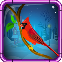 Games4escape Red Cardinal…