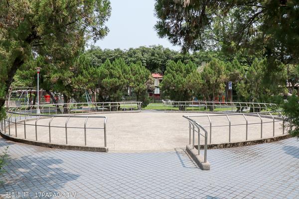 南投市|2019中興新村石斛蘭|光明三路瀑布蘭大道|光明公園
