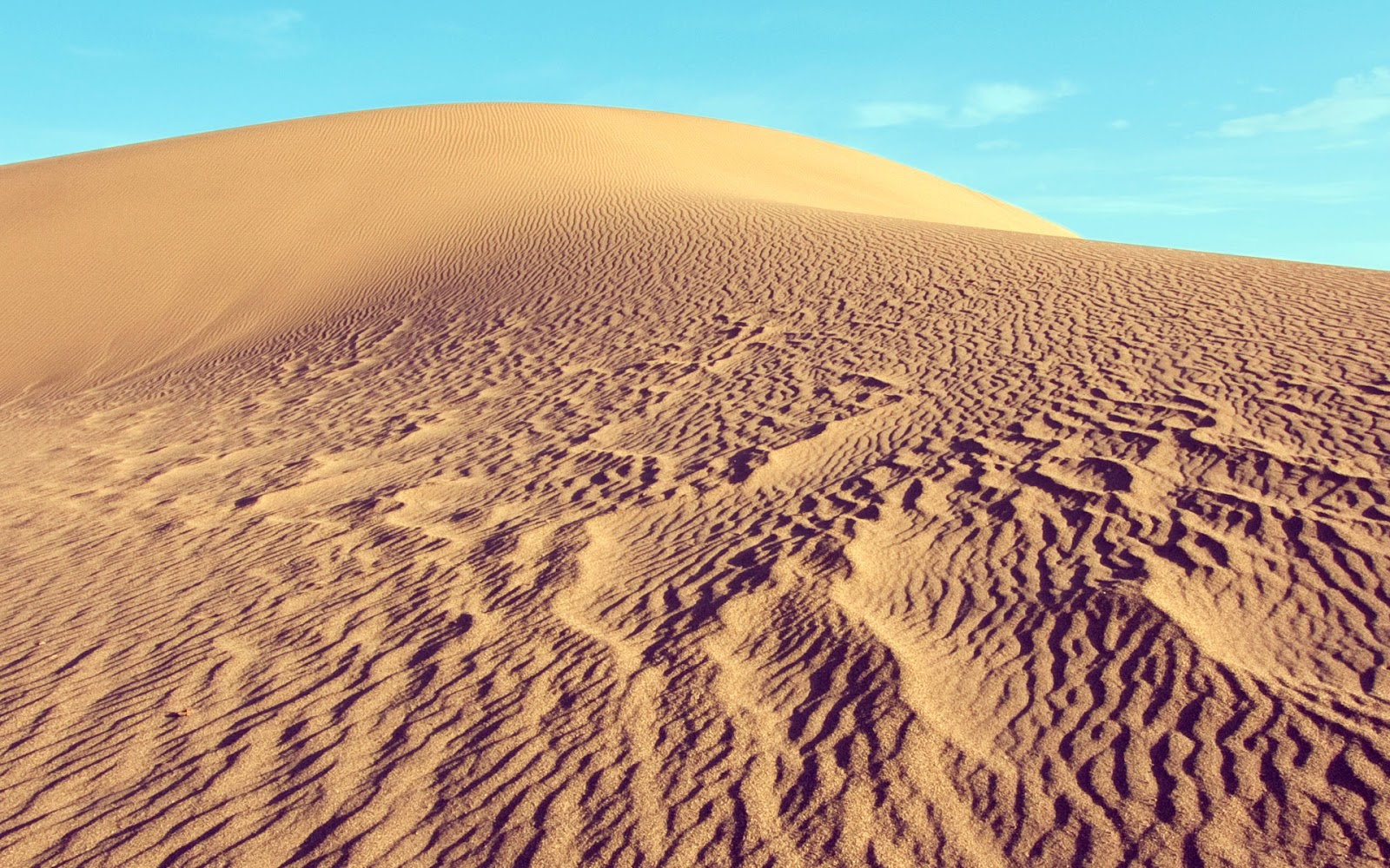 Desert Wallpapers