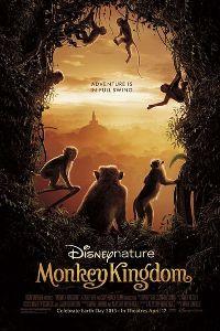 Watch Monkey Kingdom Online Free in HD
