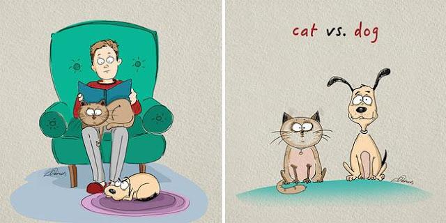 Đã tìm thấy lý do mà chó với mèo không thể chung sống hoà bình
