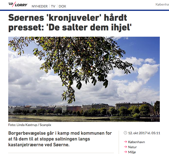 https://www.tv2lorry.dk/artikel/soeernes-kronjuveler-haardt-presset-de-salter-dem-ihjel