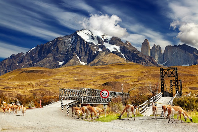 Patagonia (Argentina and Chile)