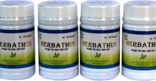 http://stokisnasademak.blogspot.com/2017/03/herbathus-obat-asam-urat-herbal-alami.html