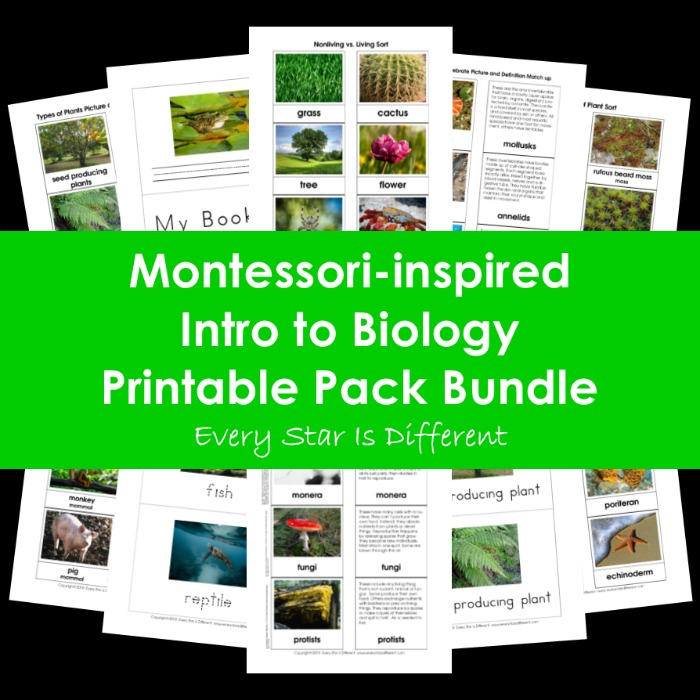 Montessori-inspired Intro to Biology Printable Pack Bundle