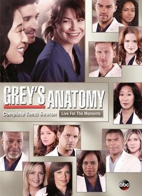 Baixar Grey's Anatomy 10ª Temporada Dublado