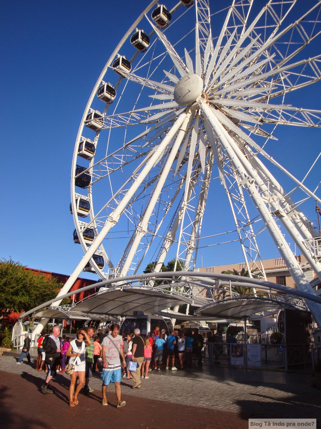 Roda-gigante Wheel of Excellence - Cidade do Cabo