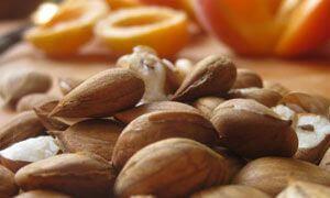 косточки абрикосов вредны для здоровья