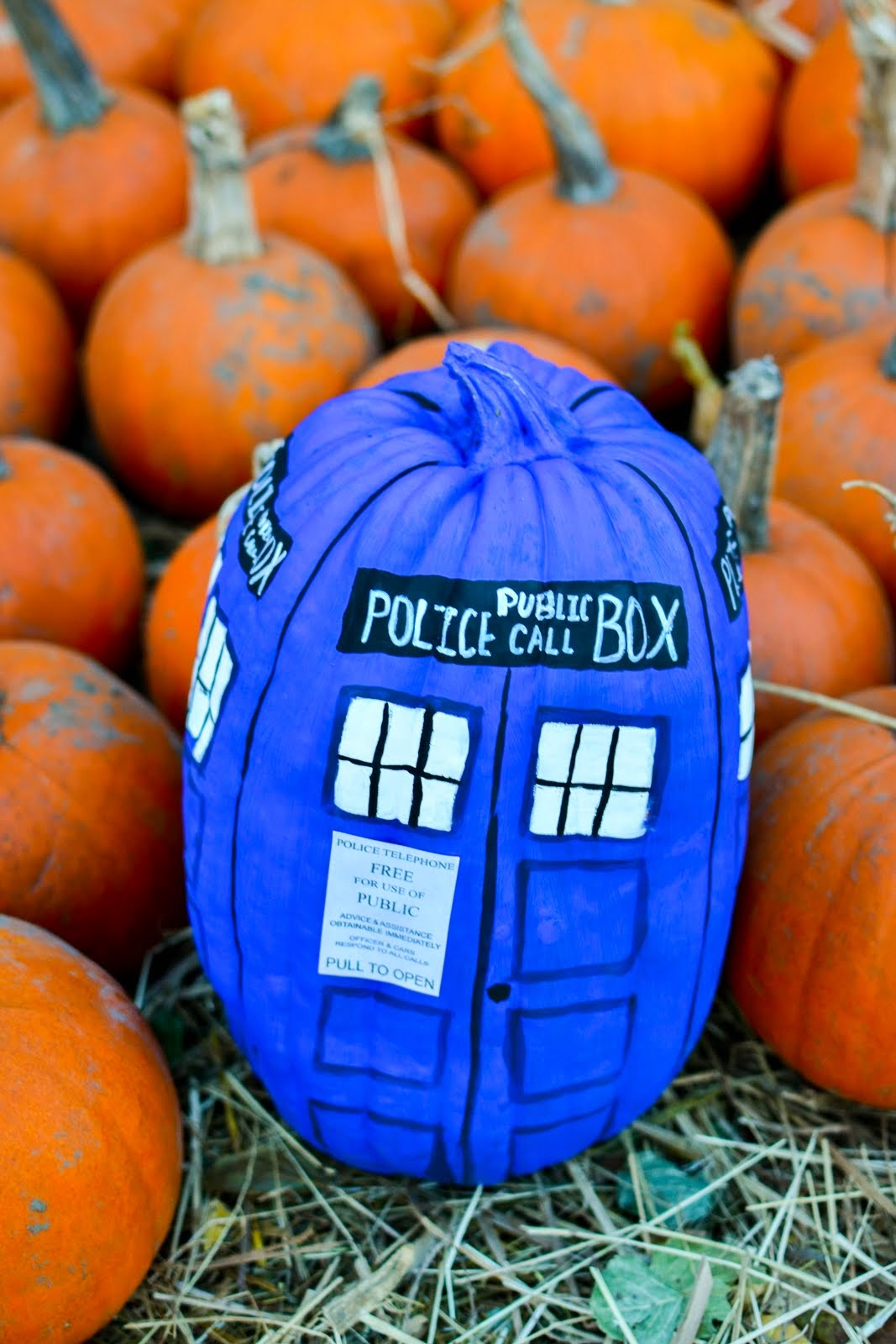 P S ♡ Diy Tardis Painted Pumpkin