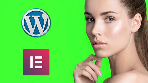 Learn How to MAKE a WordPress Website - PROFESSIONAL