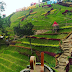 Batu Flower Garden, Objek Wisata Spot Foto Yang Unik Dan Menarik Bagi Wisatawan