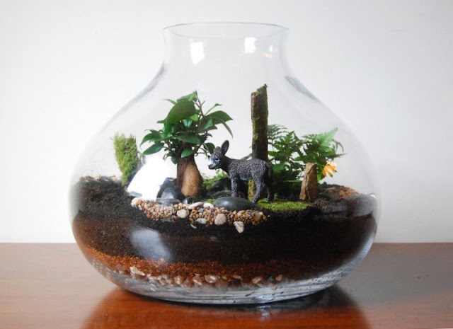 Kebun Mini Yang Unik