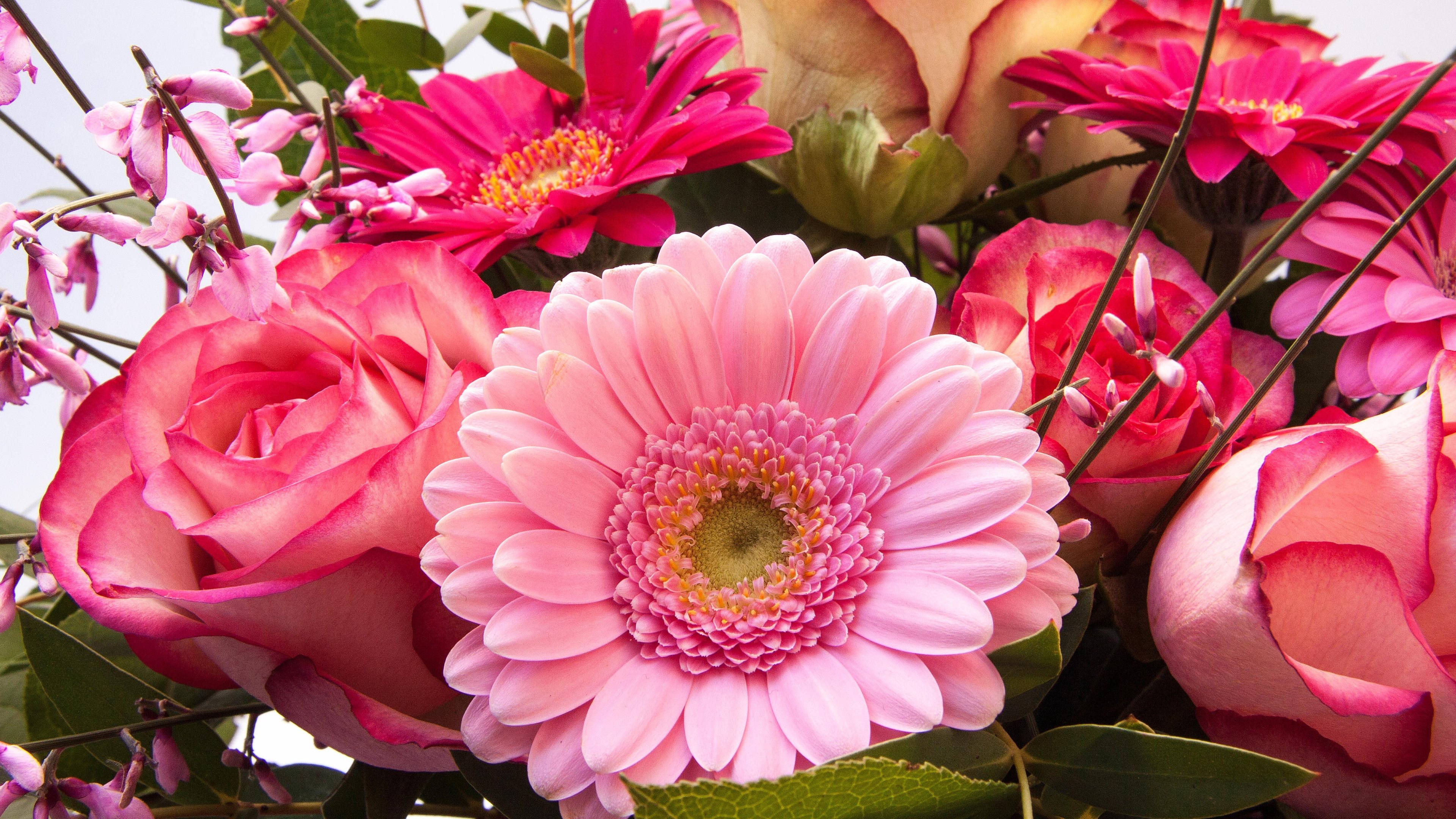Flower bouquets for special events hd wallpapers 4k 4k hd wallpaper 3 flowers bouquet for special events dhlflorist Choice Image