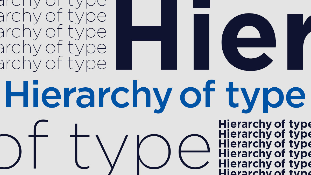 Hierarchy Of Type