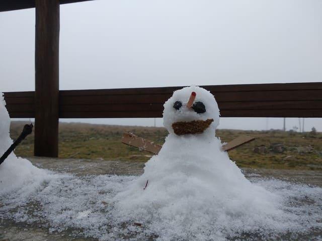 Flocos de neve são registrados em cidades da serra catarinense