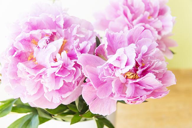 Ynas Design Blog | Pfingstrosenstrauß | Blüten