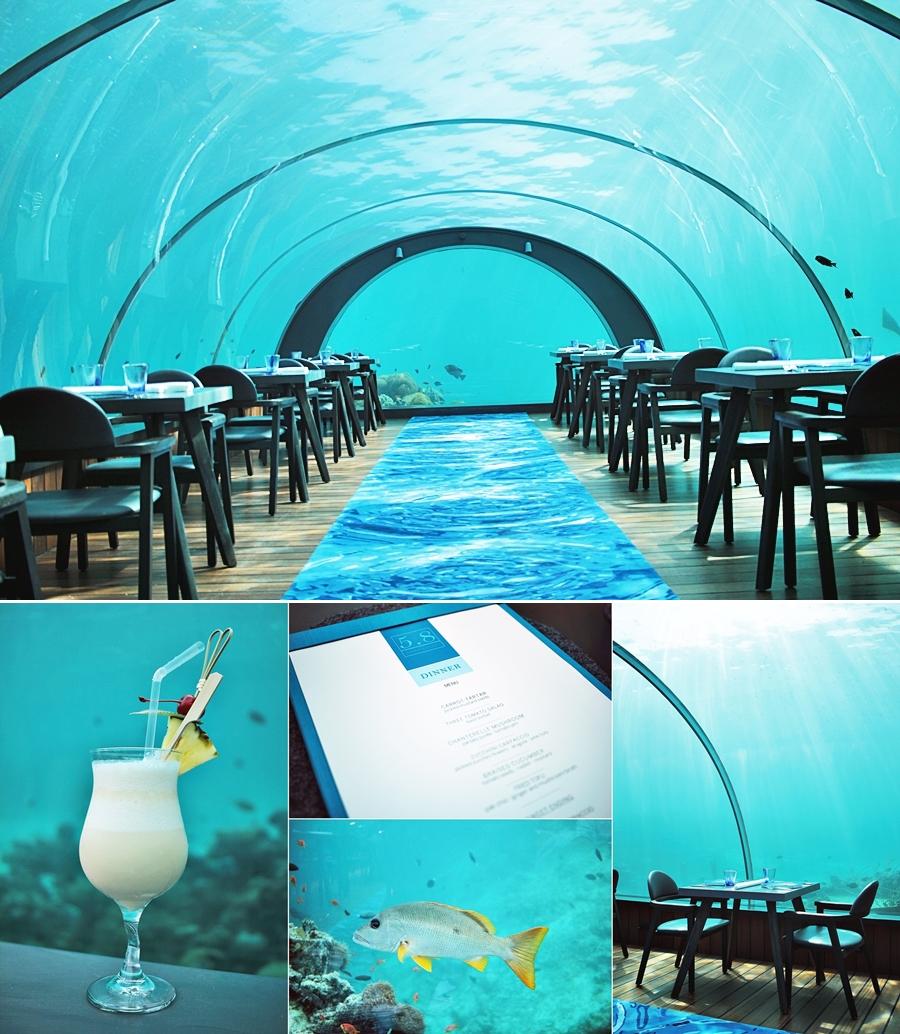 unterwasser restaurant malediven hurawalhi