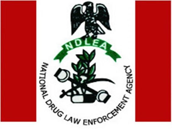 NDLEA Bemoans Indiscriminate Use Of Sirens Among Anambra Drug Peddlers