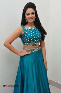 Sree Mukhi Pictures at Gentleman Audio Launch  0060