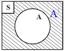 Pengertian Garis Lurus dan Garis Lengkung Beserta Contohnya