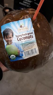 Kokosnuss frisch vom Baum