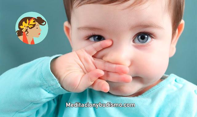 Todo sobre los bebés VIRGO