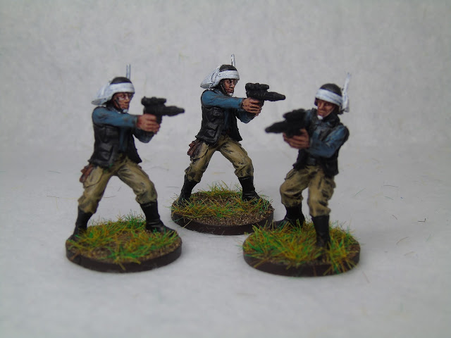 painted rebels imperial assault