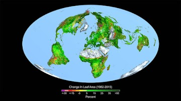 Finalmente a NASA declara  algo que é verdadeiro - dióxido de Carbono é o verde da Terra!