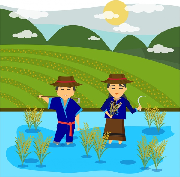 Asian farmers drawing design with rice field Free vector
