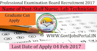 Professional Examination Board Recruitment 2017 – 272 Staff Nurse, Lab Technician, Community Health Worker
