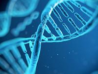 Membuktikan Keberadaan Tuhan Secara Ilmiah [Junk DNA]