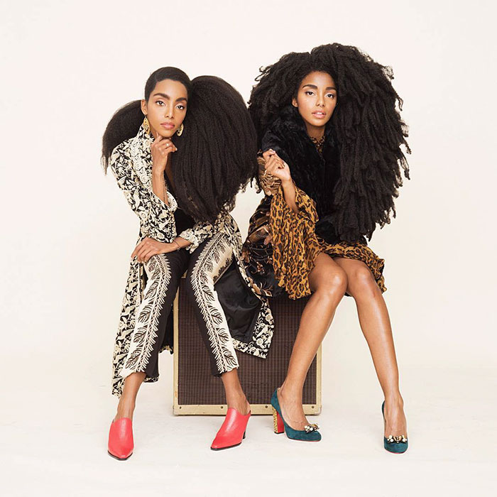 """It was about breaking down stereotypes and derogatory perceptions that people had about natural hair"" - These Twin Sisters Were Ashamed Of Their Incredible Hair, But Now They Became Famous For It"