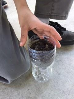 Add soil.